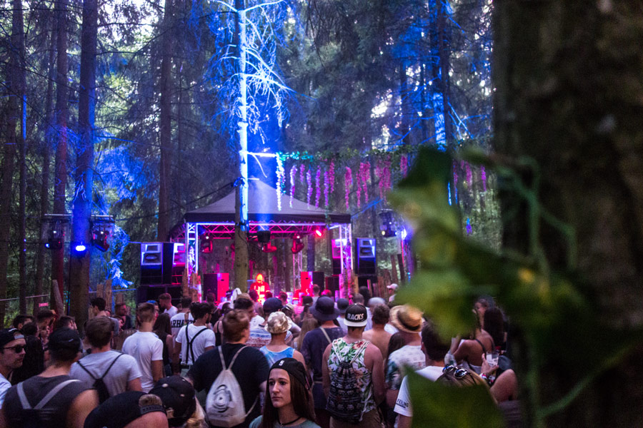ambiente: magic forest